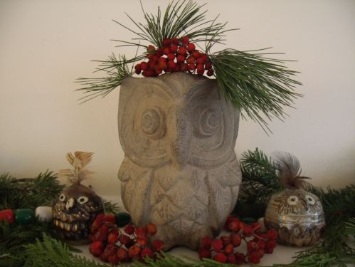 A very Merry Solstice to all my readers from me and my owl friends.